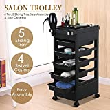 Topeakmart Rolling Salon Trolley Cart Hairdressing Storage Hair Tray Dryer Holder For Sale