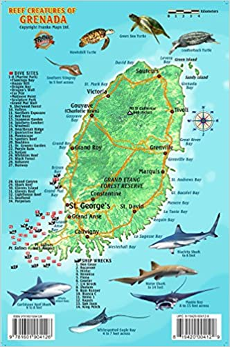 Grenada Dive Sites and Reef Creatures Map Electronic Franko