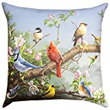 THROW PILLOWS - BACKYARD BIRDS INDOOR OUTDOOR PILLOW - 18'' SQUARE