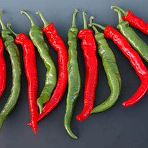 El Hombre F1 Hybrid Hot Peppers Seeds - Excellent drying and frying variety.!!(5 - - Hot Hombres