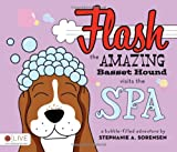 Flash the Amazing Basset Hound Visits the Spa, Stephanie A. Sorensen, 1613460791