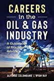 img - for Careers in the Oil & Gas Industry: A Guidebook of Practical Advice book / textbook / text book