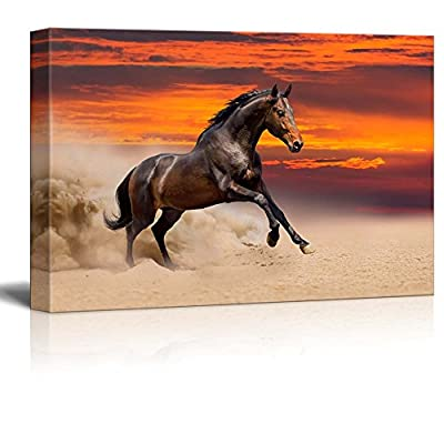 Canvas Prints Wall Art - Beautiful Bay Horse Running on The Desert at Sunset | Modern Wall Decor/Home Decoration Stretched Gallery Canvas Wrap Giclee Print & Ready to Hang - 16