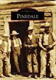 Pinedale, Ann Chambers Noble, 0738558834
