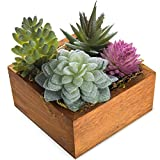 MyGift Miniature Faux Succulent Assortment in Wooden Box Planter