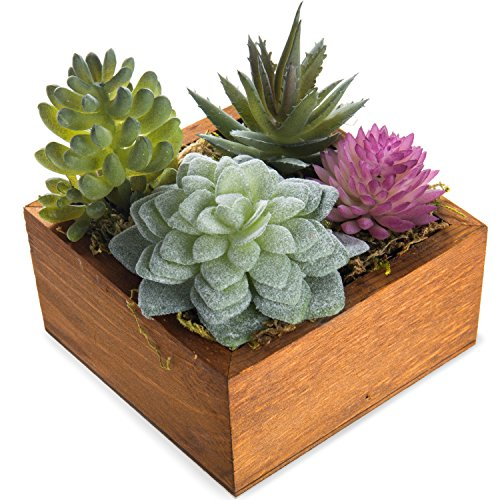 MyGift Miniature Faux Succulent Assortment in Wooden Box Planter by MyGift