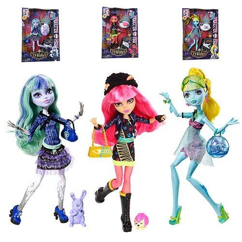 Monster High Doll 13 Wishes Wave 1 Case (Monster High 13 Wishes Howleen Wolf Doll)