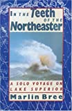 img - for In the Teeth of the Northeaster: A Solo Voyage on Lake Superior book / textbook / text book