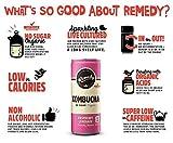 Remedy Raw Organic Kombucha Tea - Sparkling Live