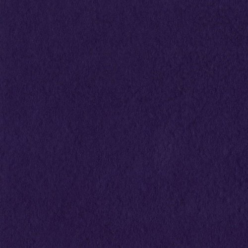 Bazzill Basics 19-6134 Prismatic Cardstock, Classic Purple, 25 Sheet Pack, 8.5 x 11 ()