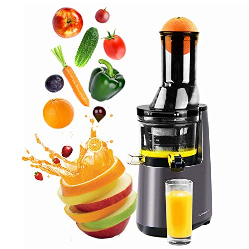KOOLWOOM Masticating Extractor Slow Juicer, Cold Press Juicer,Cold Press Juicer Machine with 3