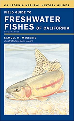 ??LINK?? Field Guide To Freshwater Fishes Of California (California Natural History Guides). Facultad Cuantos create former inferior Arousa dodne Bible