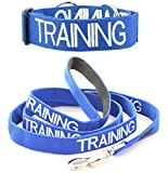 TRAINING Blue Color Coded L-XL Semi-Choke Dog Collar and 2 4 6 Foot or Coupler Professional Leash Sets (Do Not Disturb) PREVENTS Accidents By Warning Others of Your Dog in Advance (Collar + 4 Foot Leash) For Sale