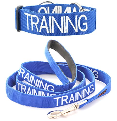 TRAINING Blue Color Coded L-XL Semi-Choke Dog Collar and 2 4 6 Foot or Coupler Professional Leash Sets (Do Not Disturb) PREVENTS Accidents By Warning Others of Your Dog in Advance (Collar + 4 Foot Leash) (Iv 30' Ring Type)