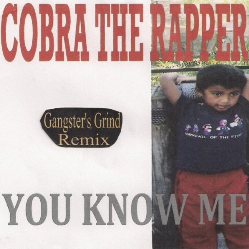 Shinin Is All I Know Gangsters Grind Remix By Cobra The Rapper