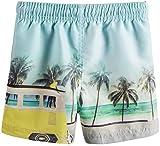 Akula Summer Baby Boys'Beach Print Trunk Shorts