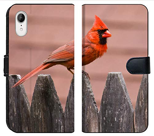 Apple iPhone XR Flip Fabric Wallet Case Image of Bird Nature Cardinal Wildlife Male red Wing Avian Feathers Feeder Birds Backyard Songbird Perched Winter