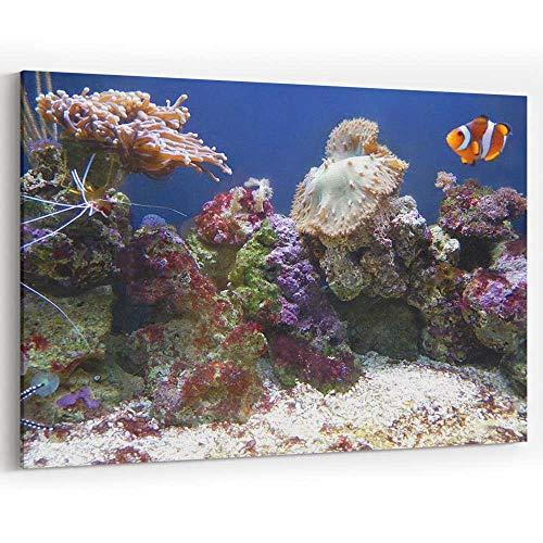 Actorstion Image of Orange and White Clown Fish in Marine Aquarium 049233 Canvas Art Wall Dector,36