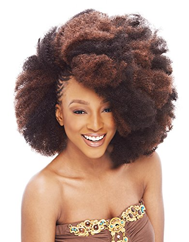 Janet Collection Noir 2X Afro Kinky Bulk 24