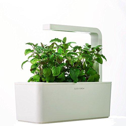 Gentil Amazon.com : Click U0026 Grow Indoor Smart Herb Garden With 3 Basil Cartridges,  White Lid : Garden U0026 Outdoor