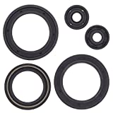 Winderosa 822142 Engine Oil Seal Kit