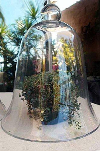 Richland Thick Glass Bell Jar 11.5