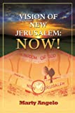 img - for Vision of New Jerusalem: Now! book / textbook / text book