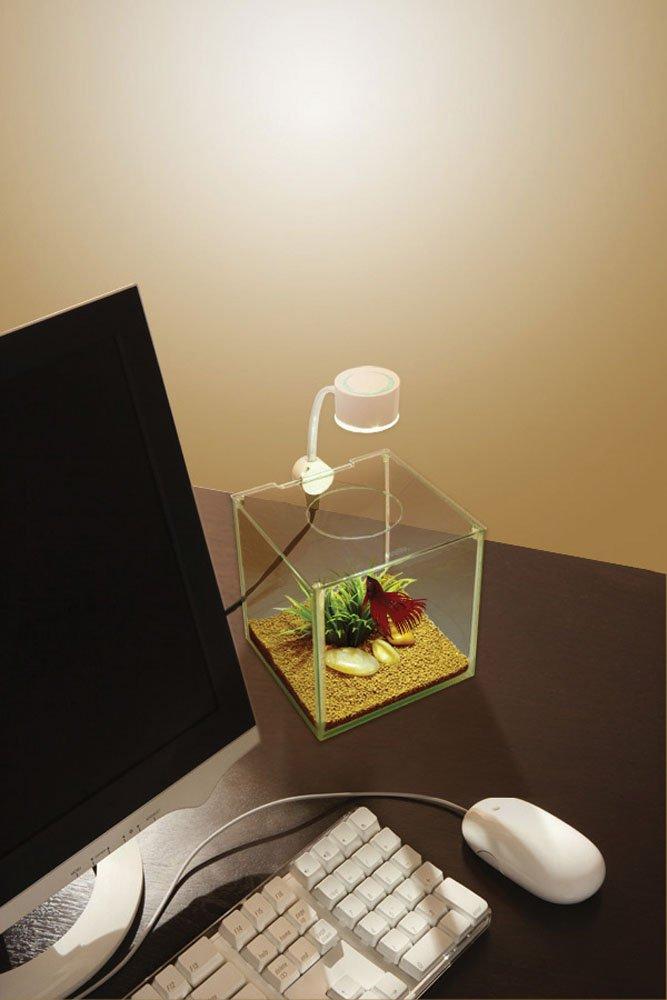 Marina CUBUS Glass Betta Kit by Hagen