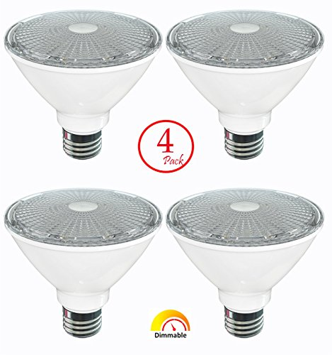 Halogen Flood Light Bulb Disposal - 6