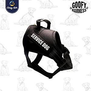 Top rated 5 best Dog Harness in India in August 2020
