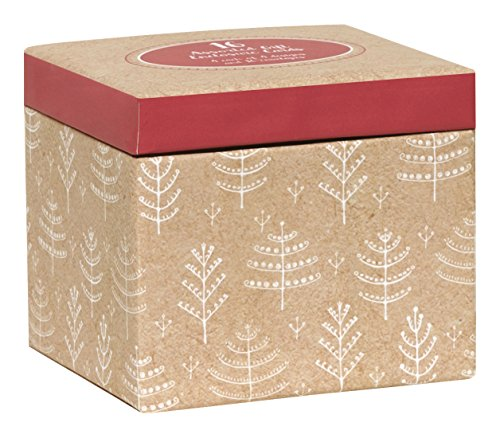 C.R. Gibson 16 Count Keepsake Boxed Holiday Gift Enclosure Card Set, Measures 3