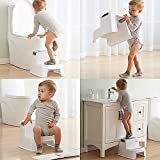 Angelbliss Dual Height 2 Step Stool for