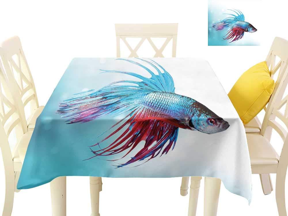 水族館 テーブルカバー テーブルクロス シャムズファイティングベタ魚 スイミング アグレッシブな海洋動物 3Dダイタルプリントカバー 50 x 50 Inch B07PQ58ZM6  カラー01 50 x 50 Inch