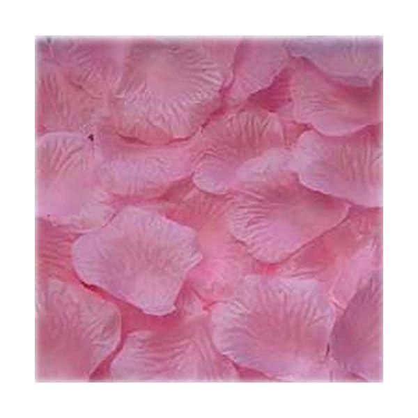 1000pcs-Light-pink-Silk-Rose-Petals-Bouquet-Artificial-Flower-Wedding-Party-Aisle-Decor-Tabl-Scatters-Confett