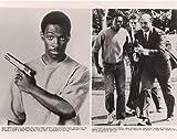 Beverly Hills Cop - Eddie Murphy - Movie Poster Photo - 8 x 10