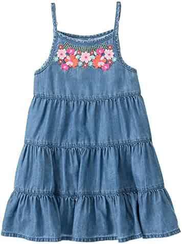 Gymboree Big Girls' Short Sleeve Chambray Dress Embroid Neck