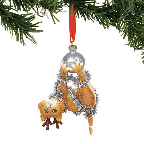 Department 56 Gary Patterson Tight Cat Hanging Ornament, 3.75 Inches, Multicolor