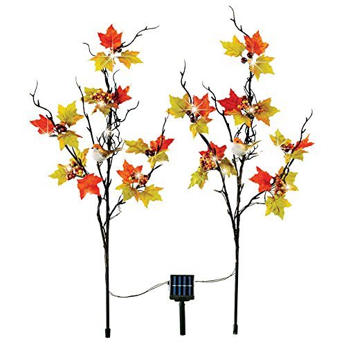 Collections Etc Solar Autumn Branch Decorative Garden Stakes, Lighted Fall Outdoor Décor by Collections Etc