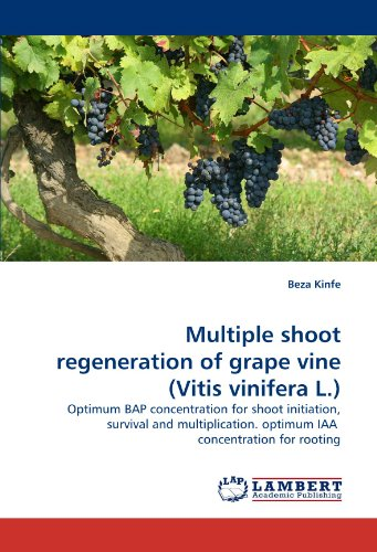 Multiple shoot regeneration of grape vine (Vitis vinifera L.): Optimum BAP concentration for shoot initiation, survival and multiplication.  optimum IAA  concentration for rooting