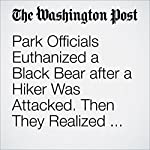 Park Officials Euthanized a Black Bear after a Hiker Was Attacked. Then They Realized They'd Killed the Wrong Animal | Katie Mettler