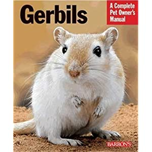 Gerbils (Complete Pet Owners Manuals) by Englebert Kotter (2010-05-03) 1