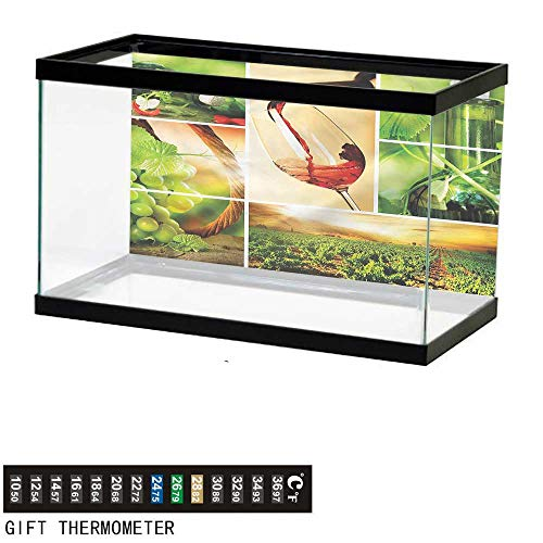 - Suchashome Fish Tank Backdrop Wine,Wine Tasting Grapevine,Aquarium Background,60