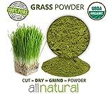 #8: 1 LB (16 OZ) Organic Whole Wheat Grass Wheatgrass POWDER, 100% Pure