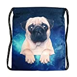 3D Print Sackpack Drawstring Bags Sack Light-Weight Nylon Backpack Outdoor Sports Resistance Water Travel Shoulder Bags Gym Bag Yoga Runner Daypack Team Training Gym Sack (Starry Sky Pug)