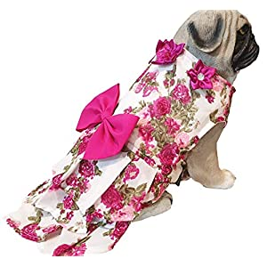 Kitty & The Woof Gang Floral Print Dress with Bow and Flower for Dogs, Cats and Puppies | Size XXS to 5XL (3XL, Magenta)
