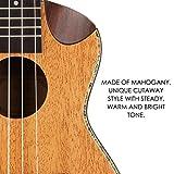 Mugig 21inch Soprano Ukulele Mahogany Body Rosewood