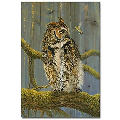 WGI-GALLERY 812 Ferrous Owl and Hummingbird Wooden Wall Art