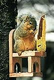 Songbird Essentials Red Cedar Squirrel Feeder Chair with Critter Corn