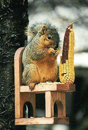 Songbird Essentials Squirrel Feeder Cedar Chair with Critter (Songbird Essentials Squirrel)