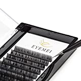 d curl lashes - Eyelash Extensions D Curl 0.15 Mixed Tray Individual Silk False Eyelashes Extension Volume Lashes Extension 8-14mm for Professional Makeup by EYEMEI